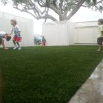 Synthetic Lawn Company Del Mar, Top Rated Artificial Turf Installation Company