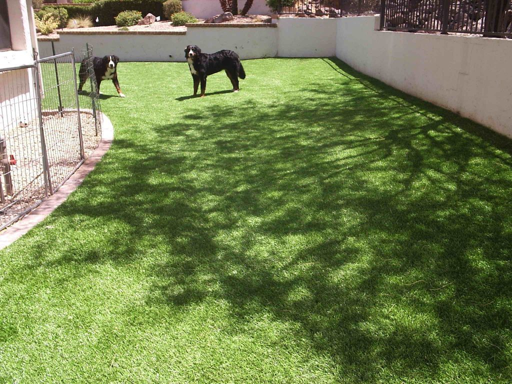 Synthetic Lawn Pet Turf Company Del Mar, Best Artificial Pet Turf Pricing