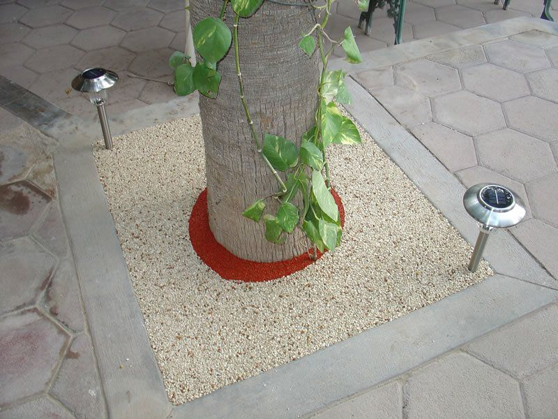 Rubber Tree Well Installation in Del Mar, Porous Tree Well